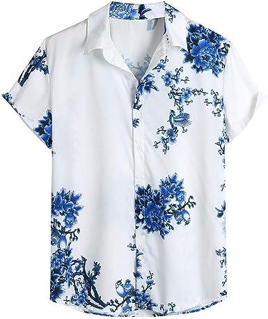 Camisas Hombre, Verano Hawaii Vacaciones Manga Corta Impresión Camisas Moda Casual T-Shirt Blusas Camiseta Playa Hombre Camisas Suave básica Suelto Cuello en v Camiseta Tops vpass: Amazon.es: Ropa y accesorios