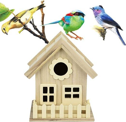 Hongxin - Cajas de Madera para pájaros y pájaros con Lazo para ...