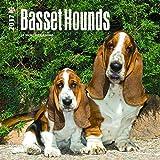Basset Hounds 2017 Mini 7x7 (Multilingual Edition)