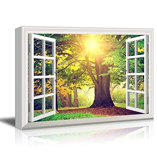 Creative Window View Sunrays Through Beautiful Tree
