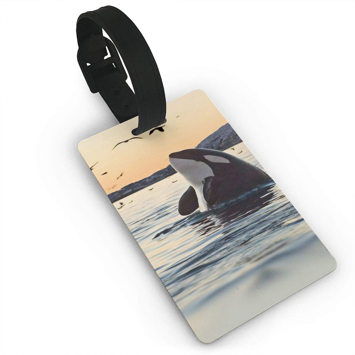 2 Pack Luggage Tags Whales Handbag Tag For Travel Bag Suitcase Accessories