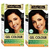 Indus Valley Organically Natural Gel Hair Color With Refreshing Orange For Damage Free Results, Extra Safe, Gentle Hair Color – Dark Brown 3.0 (Twin Pack)