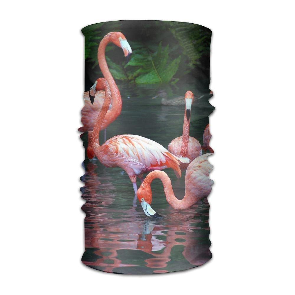 Owen Pullman Multifunctional Headwear Flamingo Head Wrap Elastic Turban Sport Headband Outdoor Sweatband