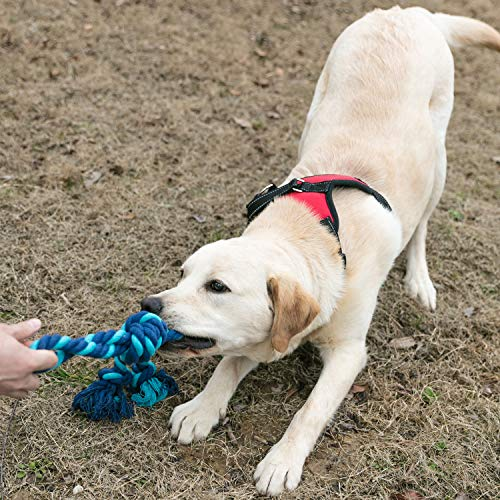 YiPet Rope Toy Dog Tug of War Interactive Play with Your Dog Chew Cotton Dental Teaser Teeth Cleaning for Medium Large Breeds (Blue)