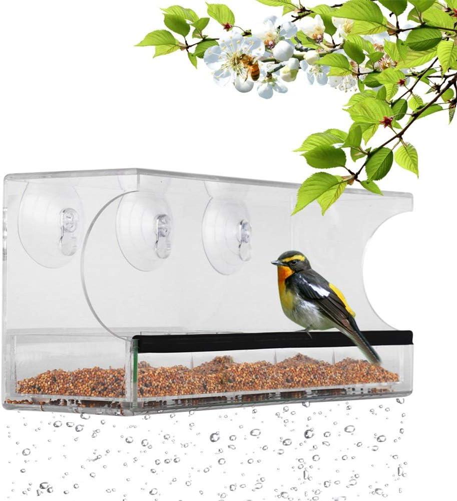 Pywee Casita para pájaros en acrílico Transparente para Ventanas Casita para pájaros en Cristal Transparente para pájaros Salvajes con 3 ventosas