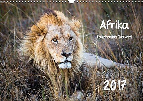 Afrika - Faszination Tierwelt (Wandkalender 2017 DIN A3 quer): Afrika - Faszination Tierwelt (Monatskalender, 14 Seiten ) (CALVENDO Tiere)