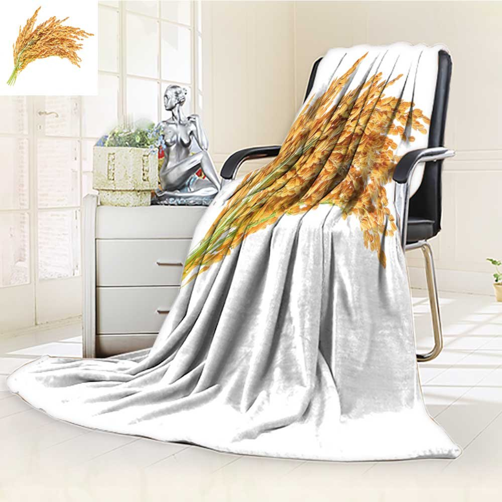 Decorative Throw Blanket Ultra-Plush Comfort ear of paddy ears of thai jasmine rice isolated on white background Soft, Colorful, Oversized | Home, Couch, Outdoor, Travel Use(60''x 50'') by Jiahonghome