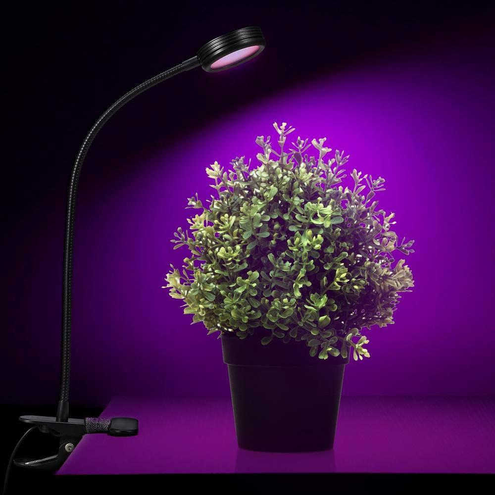 Amazon.com: Lámpara LED de cuello de cisne para crecimiento ...