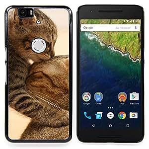 GIFT CHOICE / Teléfono Estuche protector Duro Cáscara Funda Cubierta Caso / Hard Case for Huawei Google Nexus 6P // Cute Baby Kitten Cat Mother Furry //
