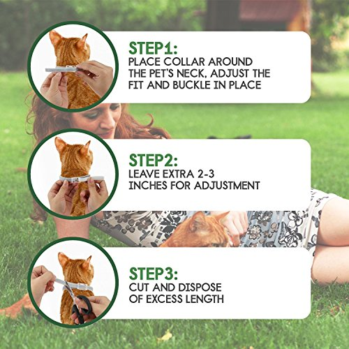 DYEOF Tick Months Hypoallergenic, Adjustable Collar Tick Prevention Natural Oil