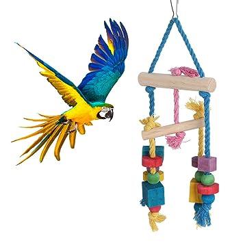 Pssopp Colgante de pájaro Columpio Bloques de Colores Mordiendo ...