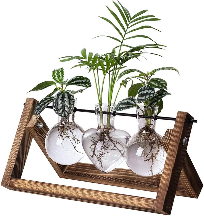XXXFLOWER HUABEI Plant Terrarium with Wooden Stand, Air Planter Bulb Glass Vase Metal Swivel Holder Retro Tabletop for Hydroponics Home Garden Office Decoration - 3 Bulb Vase