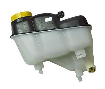 D2P para Mercedes C219, S211, W211 expansión Recipiente/Botella de Agua/líquido refrigerante expansión: Amazon.es: Coche y moto