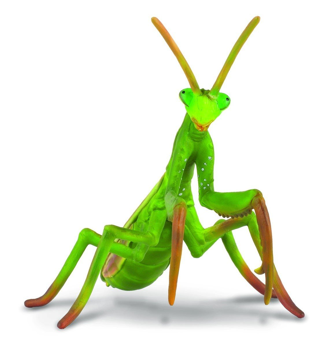 Amazon.com: CollectA Insects Praying Mantis Toy Figure - Authentic ...