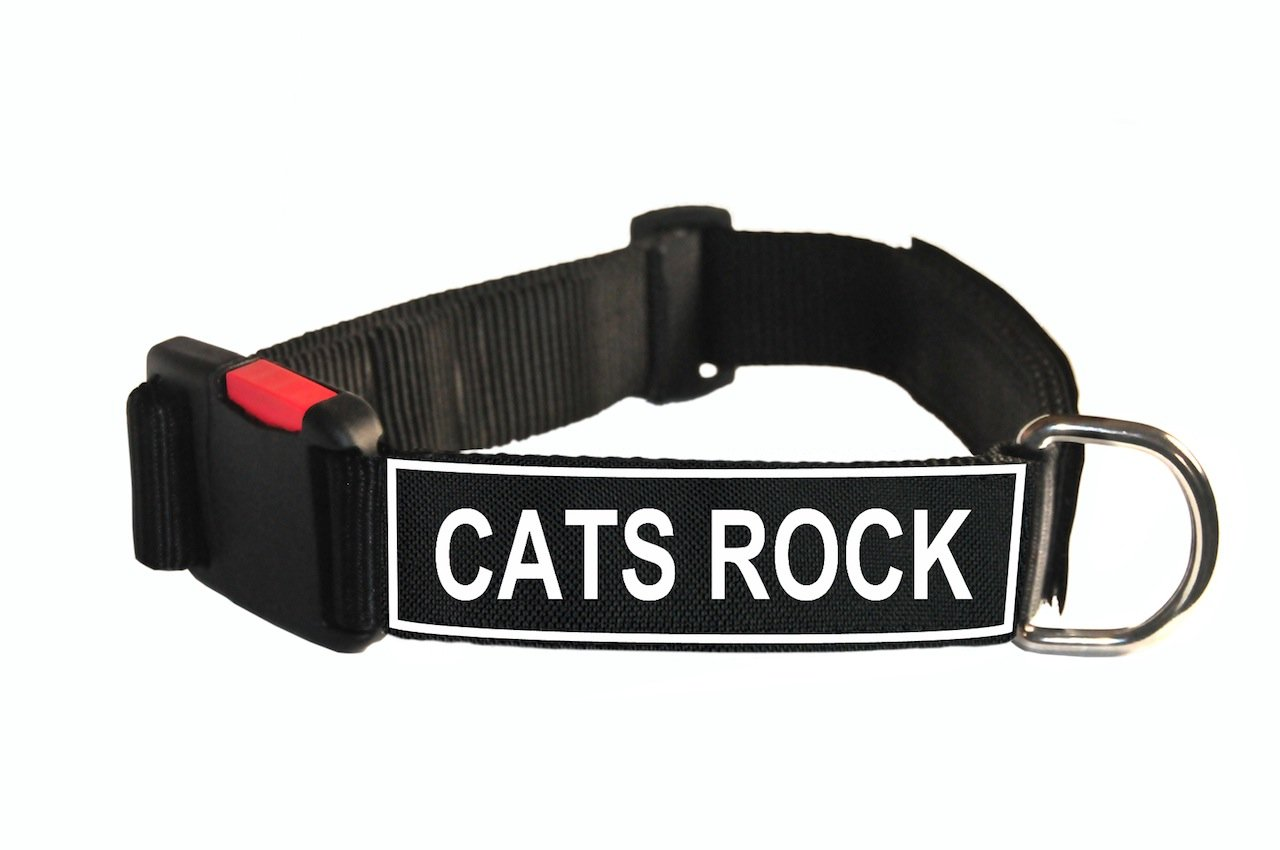 Dean & Tyler Nylon Patch Dog Collar with Cats Rock Patches, Medium, Fits Neck 21 to 26-Inch