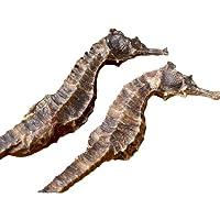 OUYANGHENGZHI Chinese Soup Materials Dried Big Sea Horse Invigorating the Kidney...