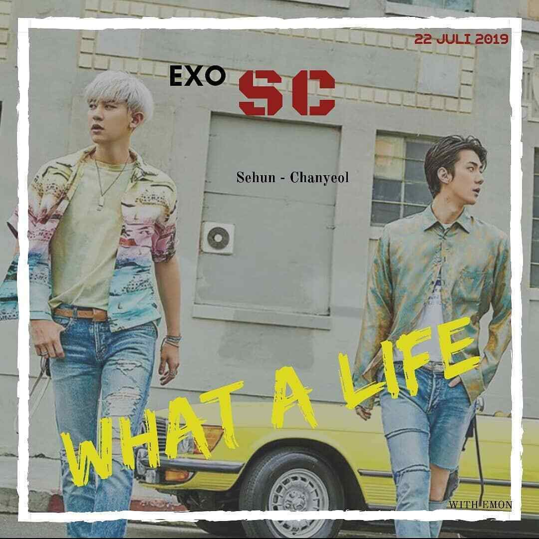 Exo Chanyeol Sehun Exo Sc What A Life Chanyeol Sehun 1st Mini Album Sc2019 Y Ver Cd Photo Book Folded Poster On Pack 1p Photo Card 1p Exo Gift Tracking Code Music