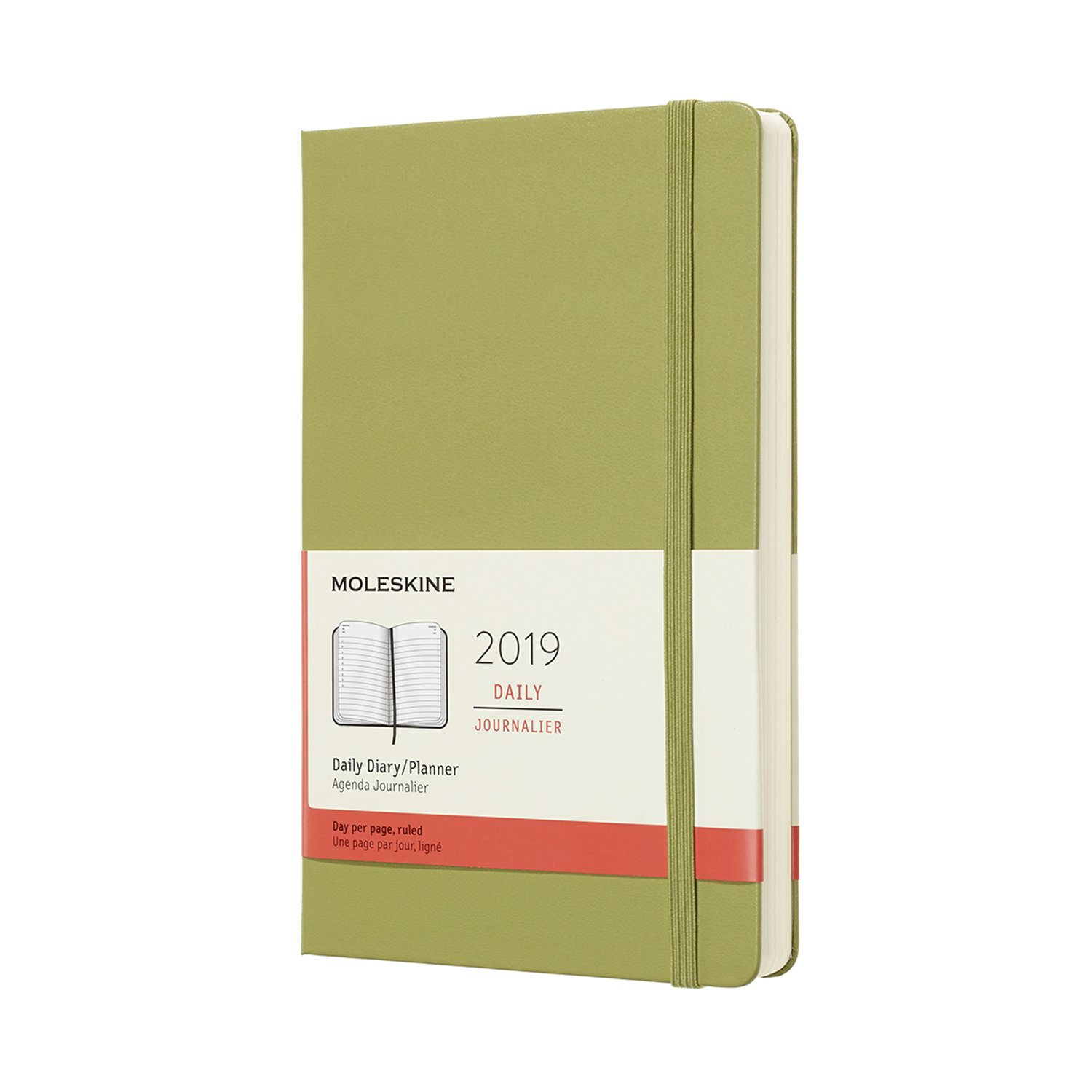 Moleskine Classic 12 Month 2019 Daily Planner Hard Cover Pocket Cinder Blue 3.5 x 5.5