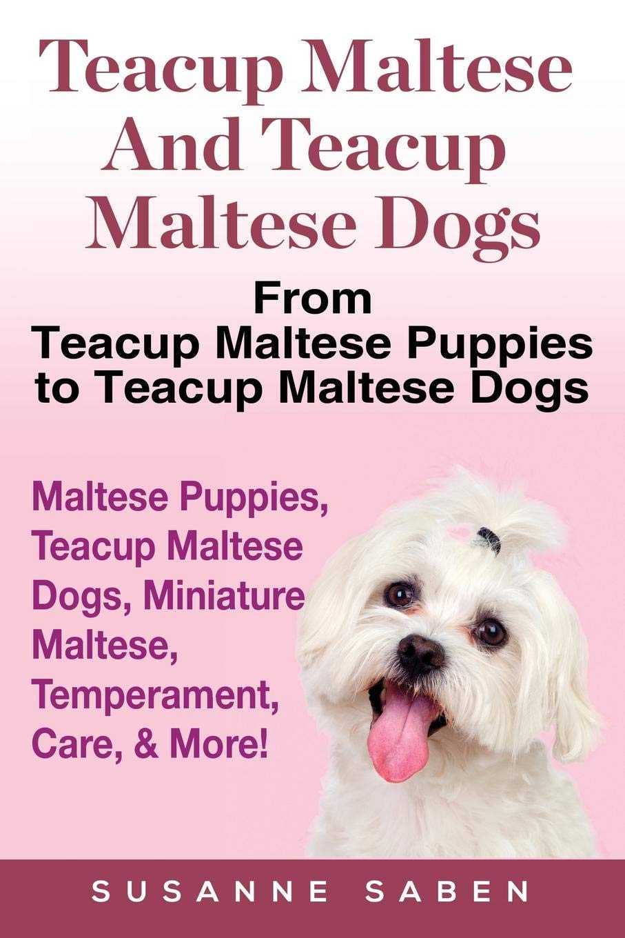 Buy Teacup Maltese And Teacup Maltese Dogs: From Teacup