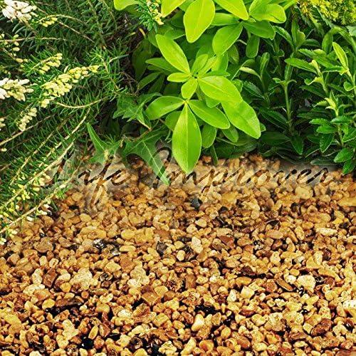Grava chipping piedra pizarra disuadir hierba jardín Patio Camino planta Topping: Amazon.es: Hogar