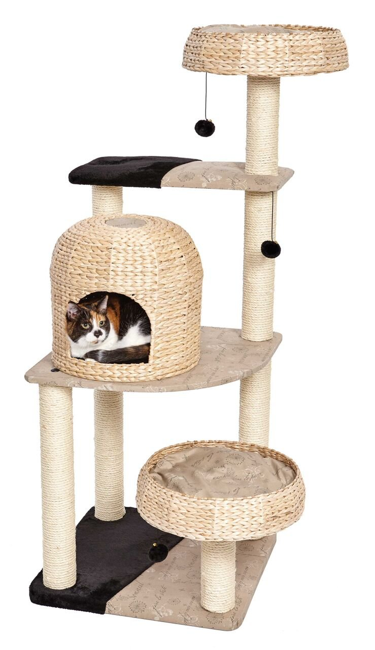 Amazon.com : Midwest Homes For Pets Biscayne Type Cat Tree : Pet Supplies