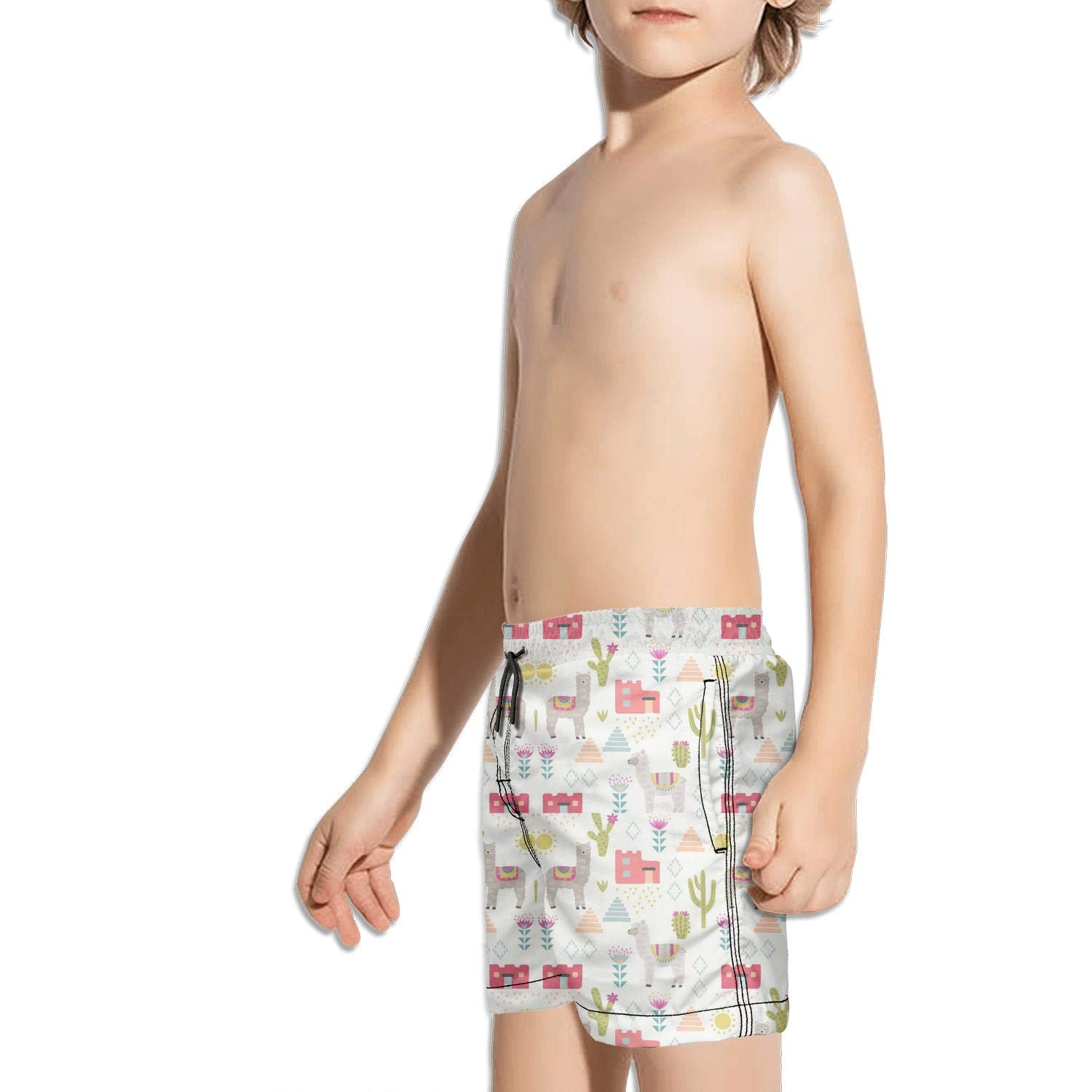Tribal Alpaca Llama Cactus Flowers Toddler Little Boys Swim Trunks Quick Dry Water Beach Board Shorts
