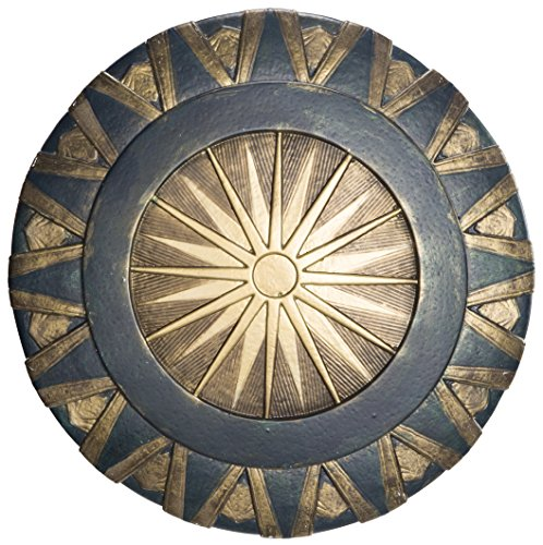 Rubie's Costume Co Men's Wonder Woman Costume, As Shown, Shield]()