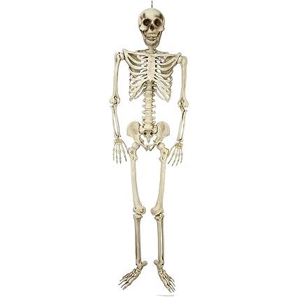 Amazon.com: Halloween Haunters Giant 7 Foot Hanging Full Body ...