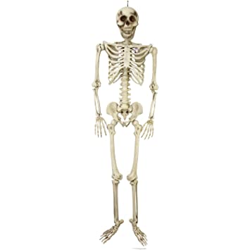 Amazon.com: Halloween Haunters Giant 7 Foot Hanging Full Body ...