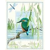 KINGFISHER Wildlife Series Derwentwater Designs Kit de broderie au point de croix