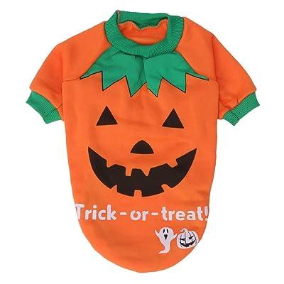 zrshygs Pet De Noël Chandail Halloween Combinaison Pet