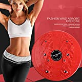 Household Twist Waist Torsion Disc Board Magnet Aerobic Foot Exercise Board