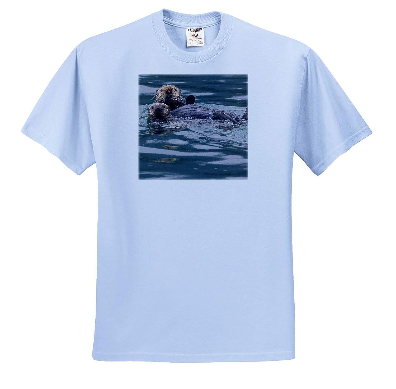 ICY Strait USA Otters ts/_314410 3dRose Danita Delimont Adult T-Shirt XL Sea Otter and pup Alaska