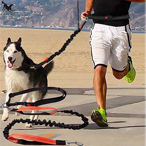 wvu dog harness - 6