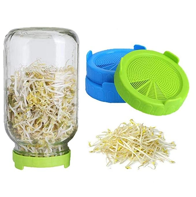 Cultivo De Hortalizas Germinación Kit De Germinación Caps Jar ...