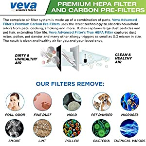 Premium True HEPA Filter with 6 Activated Carbon Pre Filters compatible with Winix 115115 Size 21 Filter A PlasmaWave P300, 5300, 5500, 6300, C535 & Fellowes Aeramax 290, 300, DX95 by VEVA
