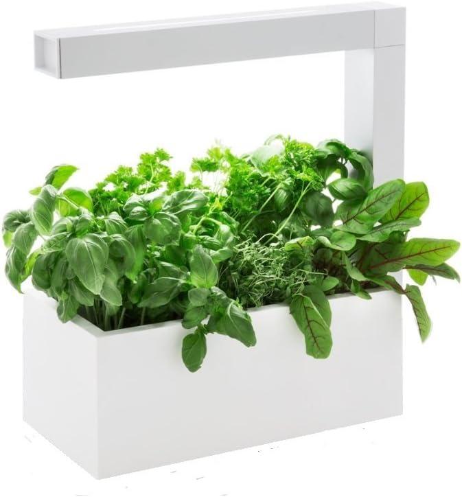 Huerto interior HERBIE blanco (enchufe espagnol) 6 plantas de ...