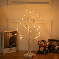 """White Birch Tree Lighted 24"""" 2FT 24LED USB and Battery Powered Timer Warm White LED Artificial Branch Tabletop Fairy…"""