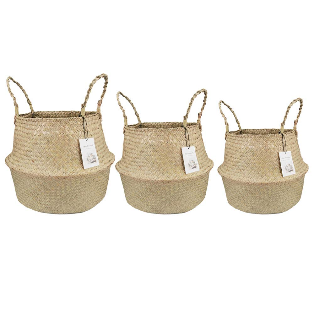 Belly Basket, Seagrass Planter for Fig Home Organization with Handles by Qliwa (XL-XXL-XXXL, Natural)