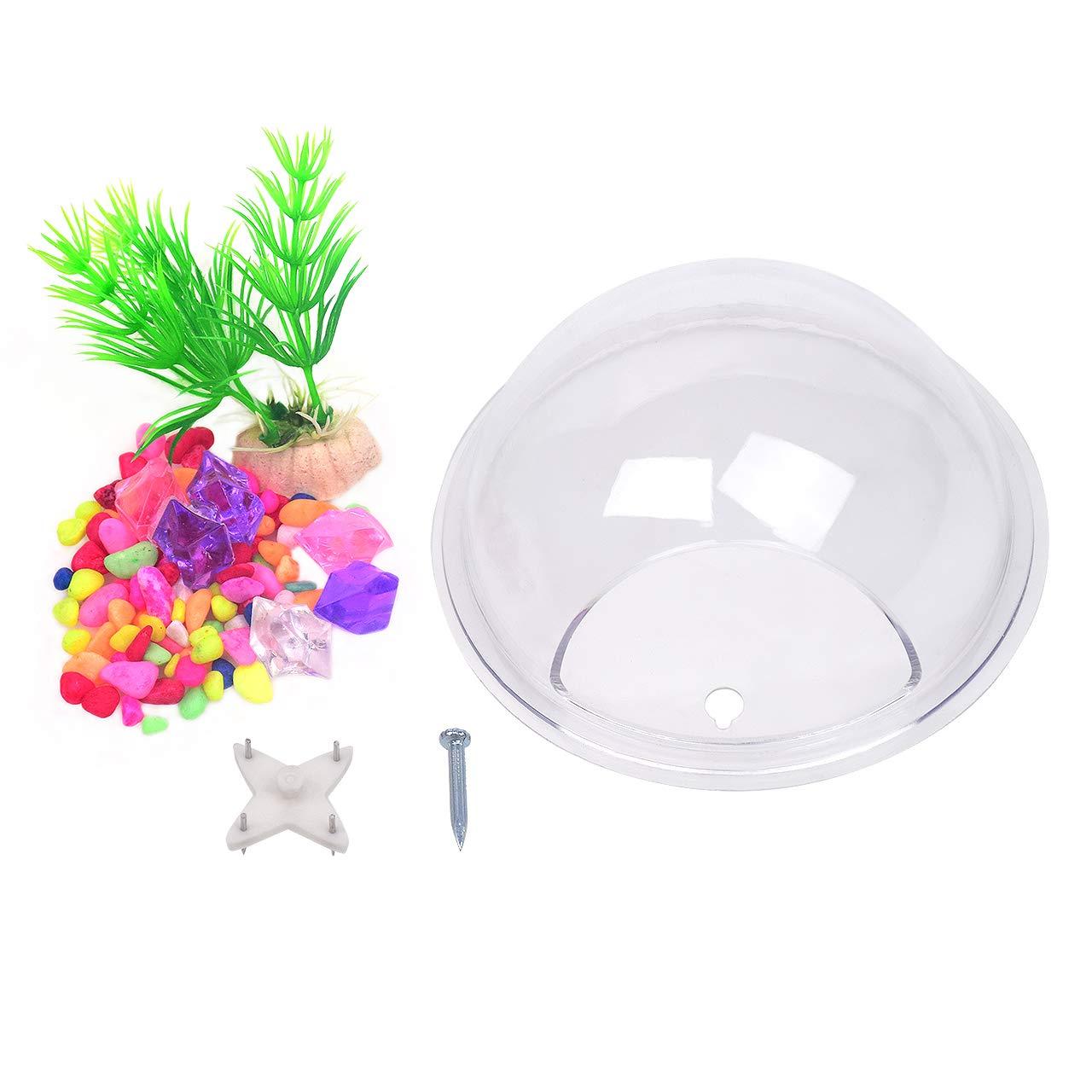15 cm de diam/ètre TONGXU D/écoration Murale /à Suspendre en Verre /à Suspendre Mural Vase Pot de Fleurs Bubble Pot de Fleurs bac /à Fleurs