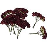 SODIAL (R) 144 pz Mini fiori carta rosa di nozze per bomboniera artigianale (Rosso)