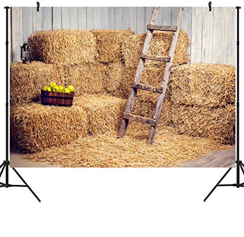 Duluda 7X5ft Haystack Autumn Birthday Backdrop Harvest Countryside Village Rural Hay Bale Photo Photography Background Grain Pile Straw Pile Party Decorations Props Photo Booth Shoot Vinyl WXL70 -