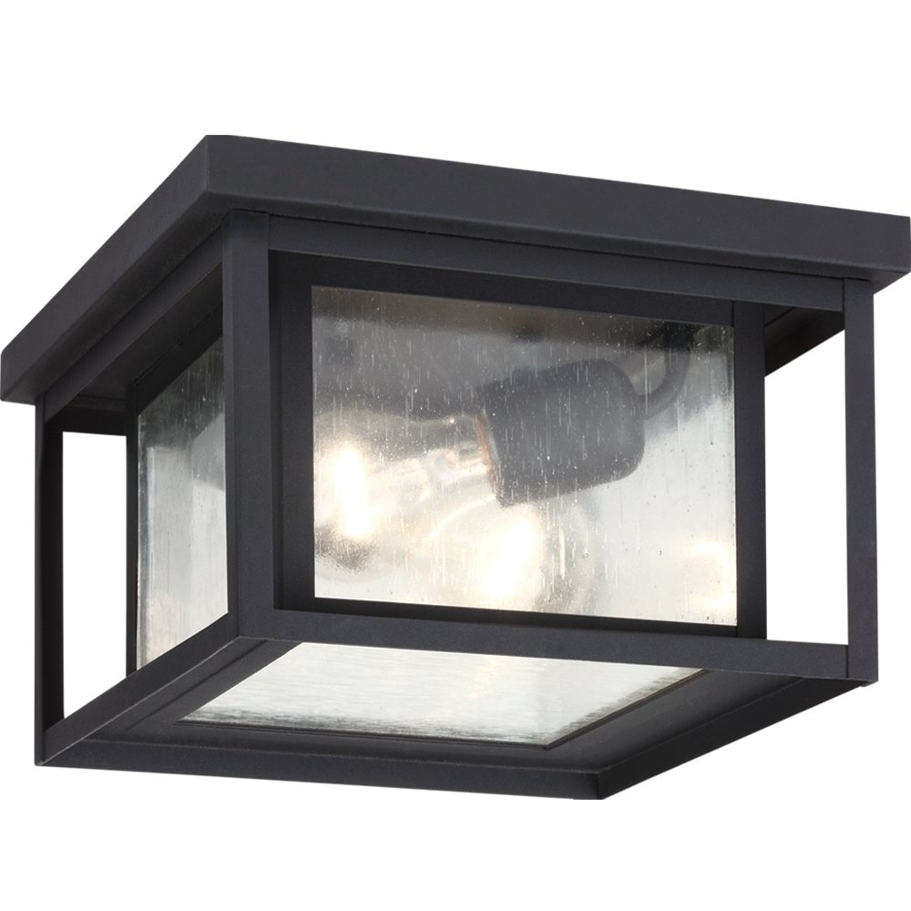 Sea gull 78027 12 sea gull lightinghunnington 2 light hanging sea gull 78027 12 sea gull lightinghunnington 2 light hangingceiling outdoor pendant fixture black close to ceiling light fixtures amazon aloadofball Images