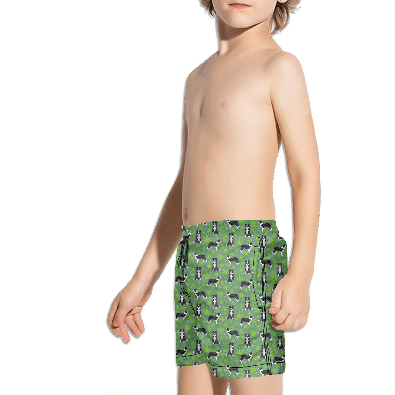 FullBo Cannabis Leaf Dog Green Little Boys Short Swim Trunks Quick Dry Beach Shorts
