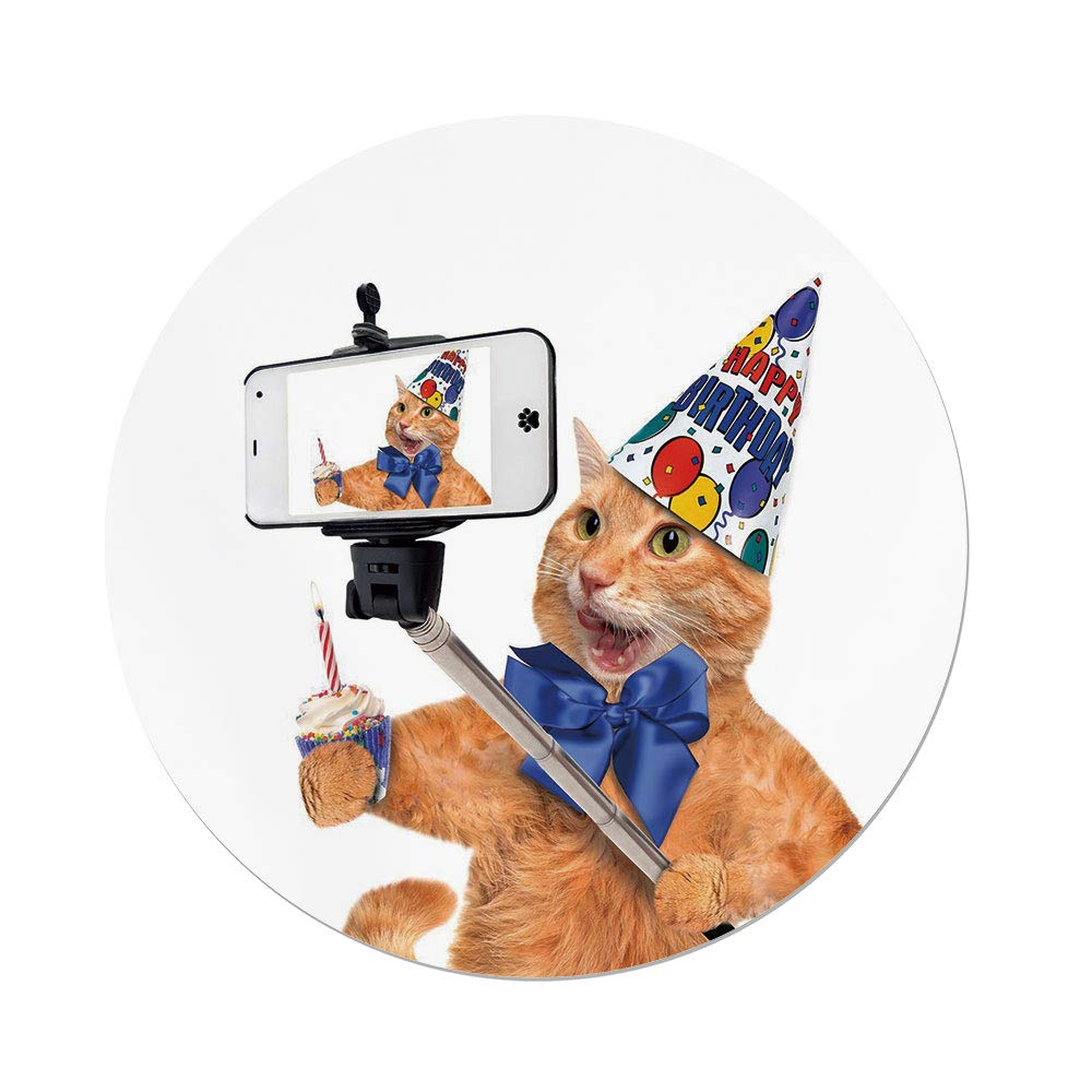 Polyester Round Tablecloth,Funny,Birthday Cat Taking A Selfie Modern Day Kitty Party Anniversary Humor Animal Picture Decorative,Multicolor,Dining Room Kitchen Picnic Table Cloth Cover,for Outdoor In