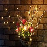 rokirs Luces de Rama de Sauce LED Luces Florales Interiores Decoración de la Fiesta de Navidad en CAS Iluminación de Navidad de Interior