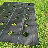 Agfabric Landscape Easy-Plant Weed Block Mulch,Outdoor Garden Weed Rugs,Weed Barrier Fabric with Planting Hole, Garden Mat, 3.0oz, 5x12ft,Hole Dia-4'' (12''Spacing x 3 Rows)