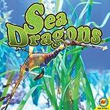 Sea Dragons, Pamela McDowell and Simon Rose, 1616908327