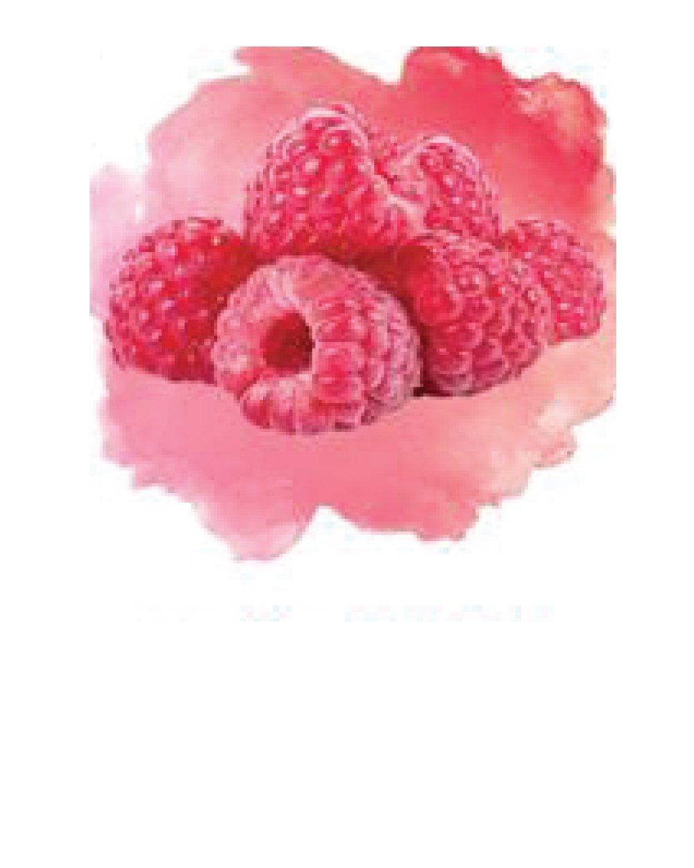 Raspberry Dragon Fruit White Shiraz (Niagara Mist) Fruit Wine Kit by Vineco Wine