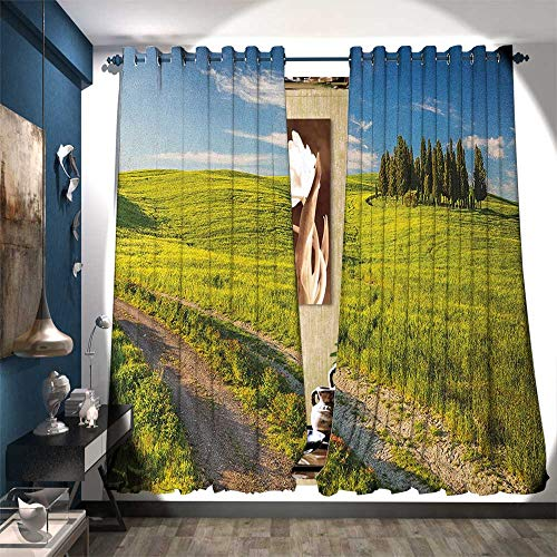 Patterned Drape for Glass Door Tuscany Italy Getaway Dreamland Cultivated Land Wildflowers Springtime Blackout Draperies for Bedroom W96 x L84 Sky Blue Fern Green ()